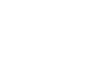 logo-psa-group-w